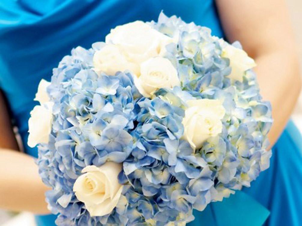 Những loài hoa tượng trưng cho tình yêu vĩnh cửu